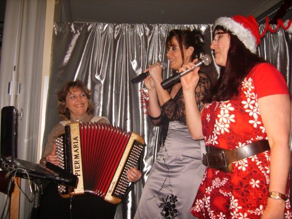 accordeon, erika, musique, noel